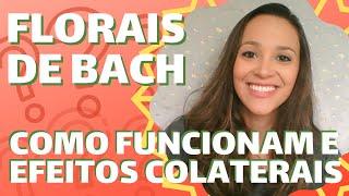 🌸 Como Os Florais De Bach Funcionam E Efeitos Colaterais 🌸 Thaís Scapim