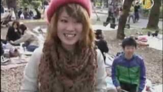 Япония, В Японии цветет сакура