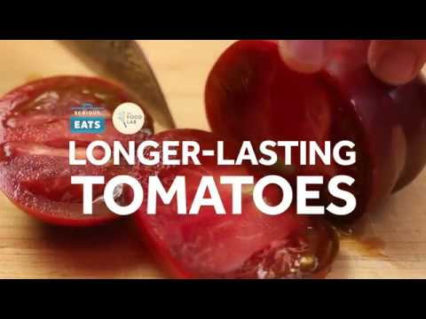 How to Make Your Tomatoes Last Longer