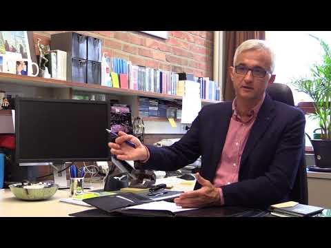 Professor Helsen over Leuvens onderzoek naar videoref in het voetbal