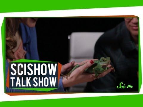 Talk Show #1