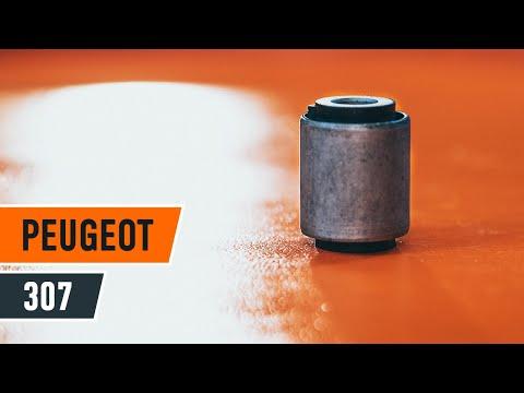 Cómo cambiar los bujes de los brazos oscilantes delanteros en PEUGEOT 307 [INSTRUCCIÓN]