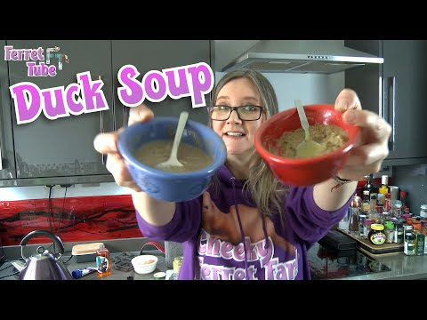, title : 'Duck Soup for ferrets - weight-gain strategy