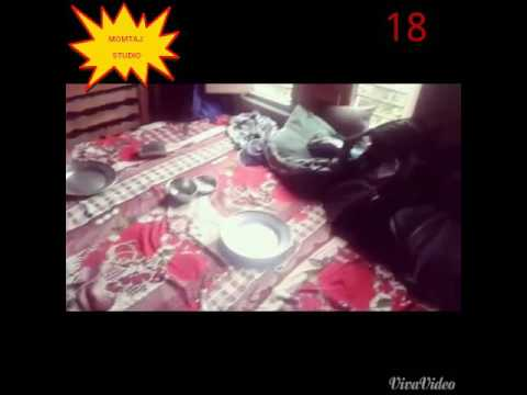 Momtaj video/xxx/Magic video/Reverse Video
