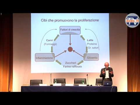 Cibo a cellulite un forum