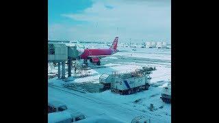 新千歳空港の環境音AnnouncementsoundsinNewChitoseAirport新千岁机场的环境声音신치토세공항의환경소리