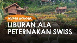 Liburan ala Peternakan Swiss di Taman Bunga Bimardi Wonogiri, Biaya Masuk Murah Meriah