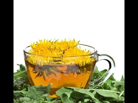 Video DANDELION FLOWER TEA BENEFITS: Health Benefits | Side Effects