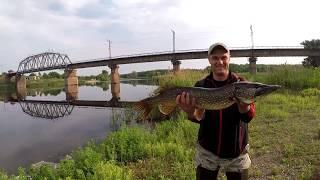 Рыбалка в новомосковске на реке самара