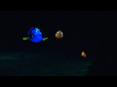 The Seas with Nemo & Friends®