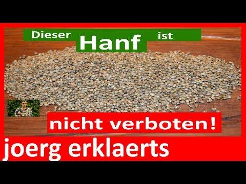 Hanf-Öl selber pressen und herstellen in Bio-Qualität Tutorial Nr.131