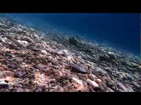Unterwasservideo FULL-HD Olympus TG 820 Digitalkamera
