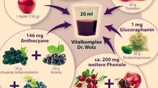 Prof. Bankhofer: Warum sekundäre Pflanzenstoffe aus Obst und Gemüse so gesund sind (Vitalkomplex)