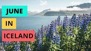 Iceland Like a Local, Iceland