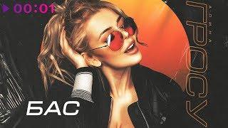 Алина Гросу - БАС | Альбом | 2018