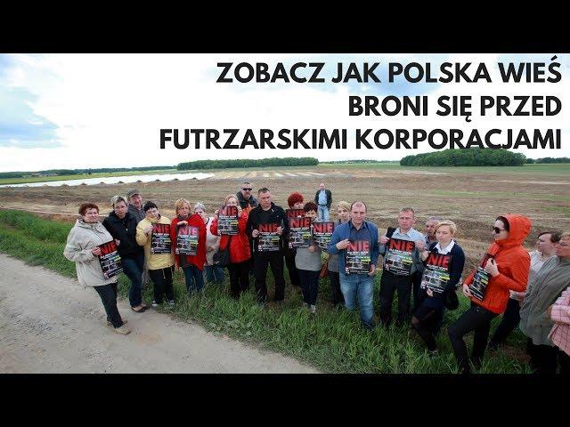 Video Aussprache von Norek in Polnisch