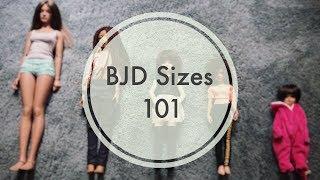 BJDs 4 Newbies | BJD Sizes 101