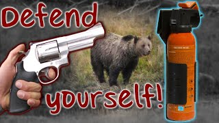 Bear Spray vs. Pistol: Which Is Better for a Bear Encounter? (Tip)