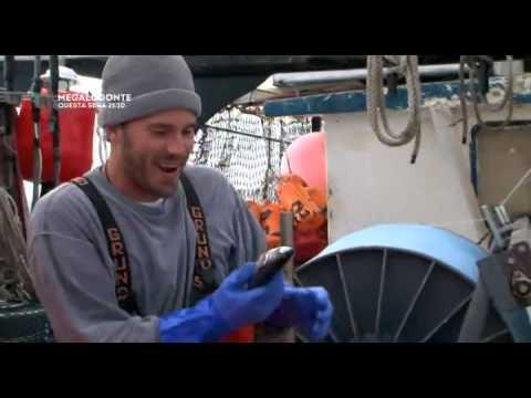 Scaricare Chita per trofeo che pesca in contatto