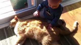 Дети и животные. Подборка Топ 7