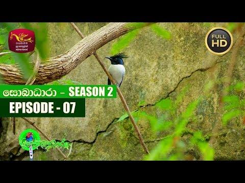 Sobadhara - සොබාධාරා | Season- 02 | Episode- 07 | 2018-02-23 | Rupavahini Documentary