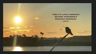 Today's little moments become tomorrow's precious memories.