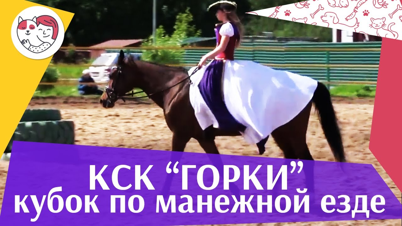 Летний кубок КСК Горки по манежной езде КЮР часть 39 на ilikepet