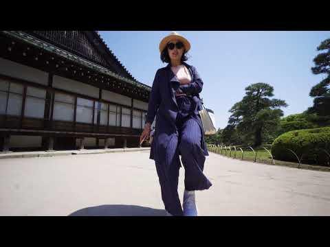 日本旅行紀錄-二條城