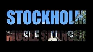 STOCKHOLM - MUSEE SKANSEN