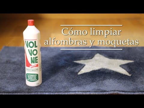 Cómo limpiar alfombras y moquetas   -    VOLVONE