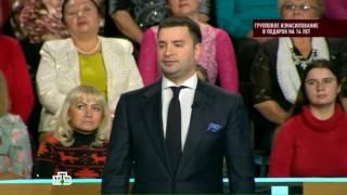 Судебный эксперт Андрей Миллер на НТВ