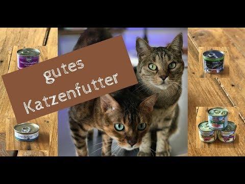 Was ist gutes Katzenfutter - welches Nassfutter fressen Coco und Nanju gerne?