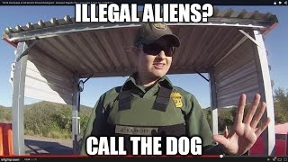 Woman in Charge - US Border Patrol Checkpoint Dog Scratching, Agent Confusion,  Tire Squealing Anger