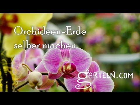 Orchideen Erde ganz einfach selber machen