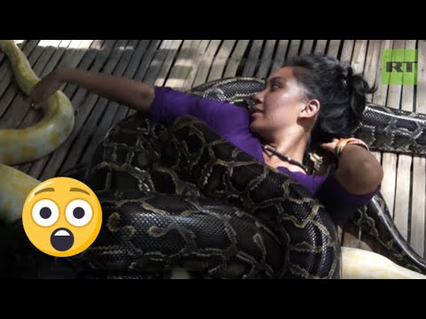 SNAKE massage aims at relaxing you, but it hardly ever will!