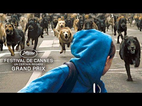 WHITE GOD Bande Annonce du film (Chiens Errants)