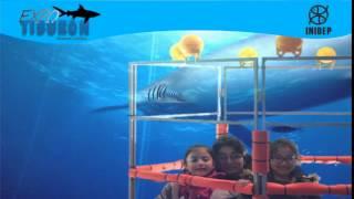 DIA 2 Expo Tiburon106