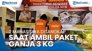 Polda NTB Tangkap 2 Mahasiswa Perguruan Tinggi Mataram saat Ambil Paket Ganja 3 Kg
