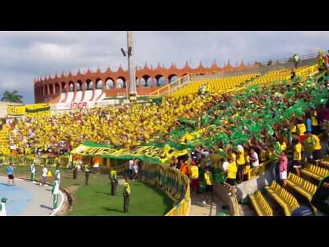 """""""Rebelion Auriverde Norte 🔰"""" Barra: Rebelión Auriverde Norte • Club: Real Cartagena"""