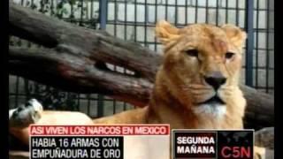 C5N-ASI VIVEN LOS NARCOS EN MEXICO