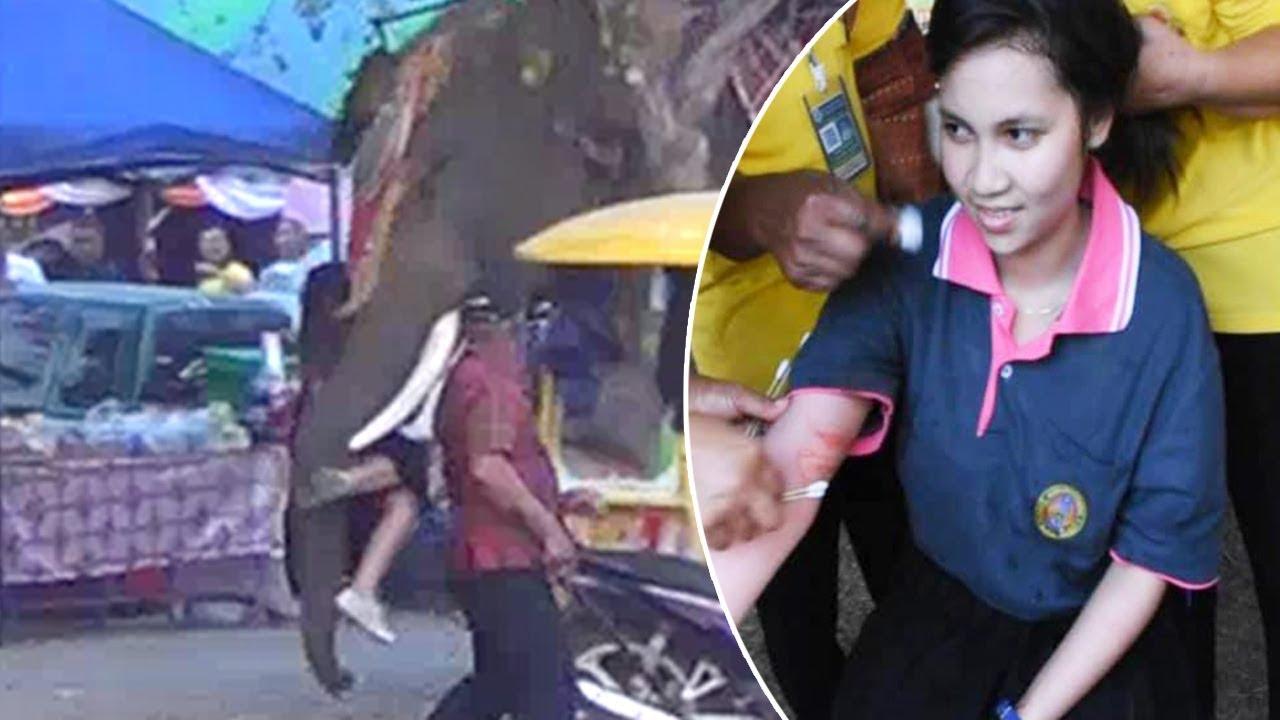 В Таиланде рассвирепевший слон напал на девушку