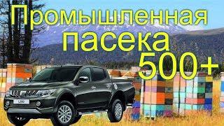 Промышленная пасека Белоруси в 500 семей /часть 1