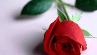 Aquel Señor (Audio) - Armando Manzanero (Video)