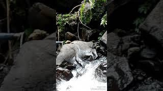 preview picture of video 'Ngetrip ke Curug Sawer, Argalingga, Majalengka.'