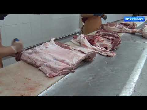 В Калмыкиии Управлением Россельхознадзора проведено обследование мясоперерабатывающего предприятия