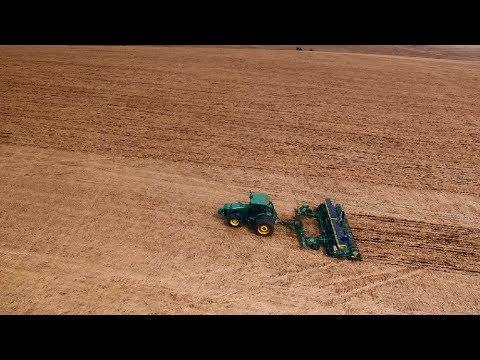 Quer saber qual o melhor herbicida para plantas daninhas?