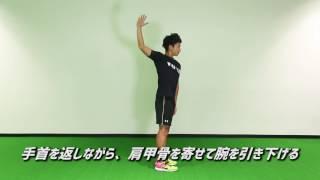 シングルアーム&スキャプラサークル【肩甲骨・胸椎 ダイナミックストレッチ】