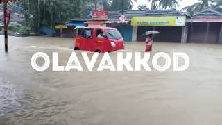 Palakkad flood palakkad heavyvrain   പാലക്കാട് വെള്ളപ്പൊക്കം പാലക്കാട് ശക്തമായ മഴ 9-8-2018 palakkad