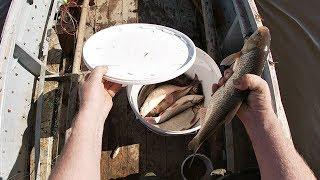 Рыбалка в печорского республики коми