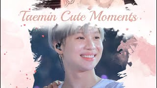Download Video Lee Taemin needs to be protect ♡ MP3 3GP MP4